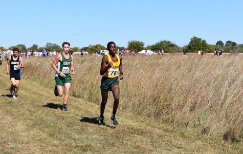 Cross country teams proving contenders for City League