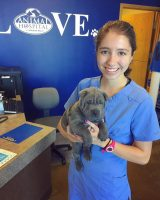 Reichenberger pictured holding a puupy at Auburn Hills Animal Hospital.