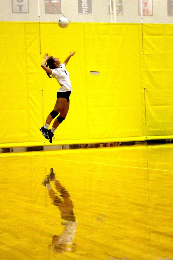 Great Shot! Lauren Stallbaumer captures nice image from volleyball's exciting season